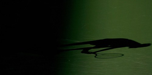 tennis-shadow